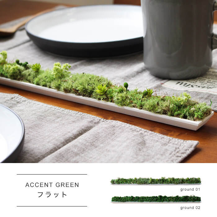 ACCENT GREEN